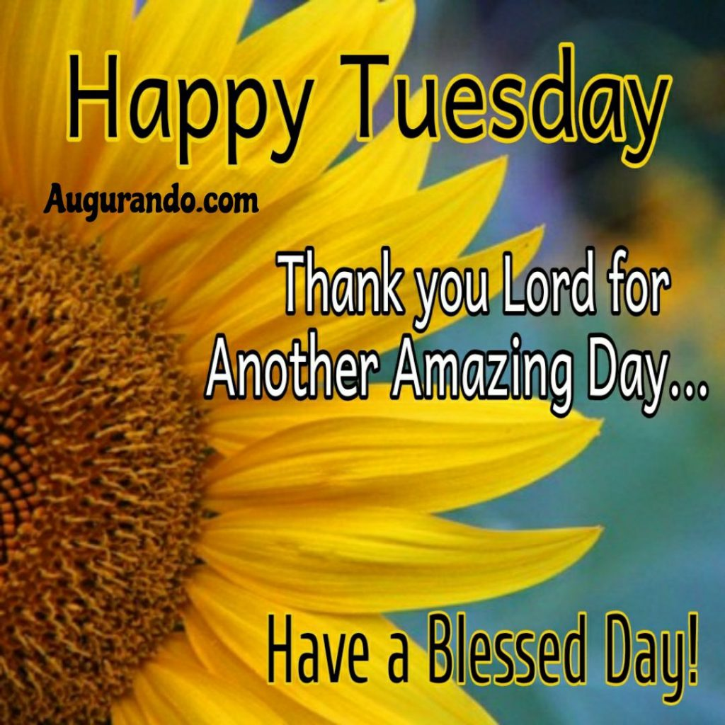 Best Good Morning Tuesday Images Always Updated Images